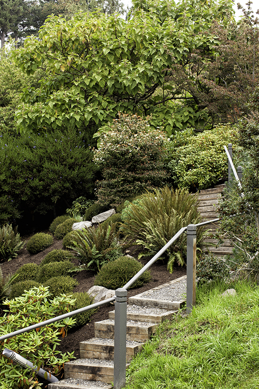 Garden Design On Steep Slopes lecocq garden | form and foliage