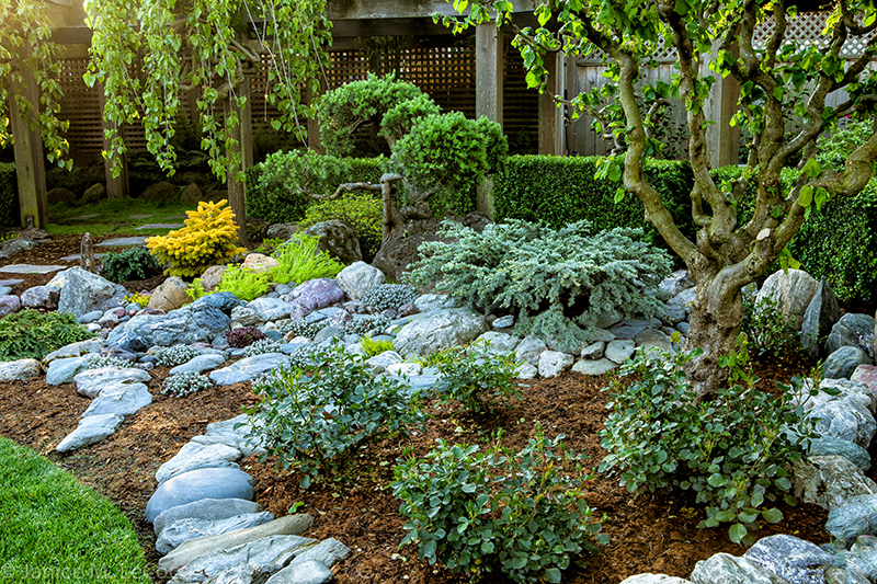 garden design form and foliage