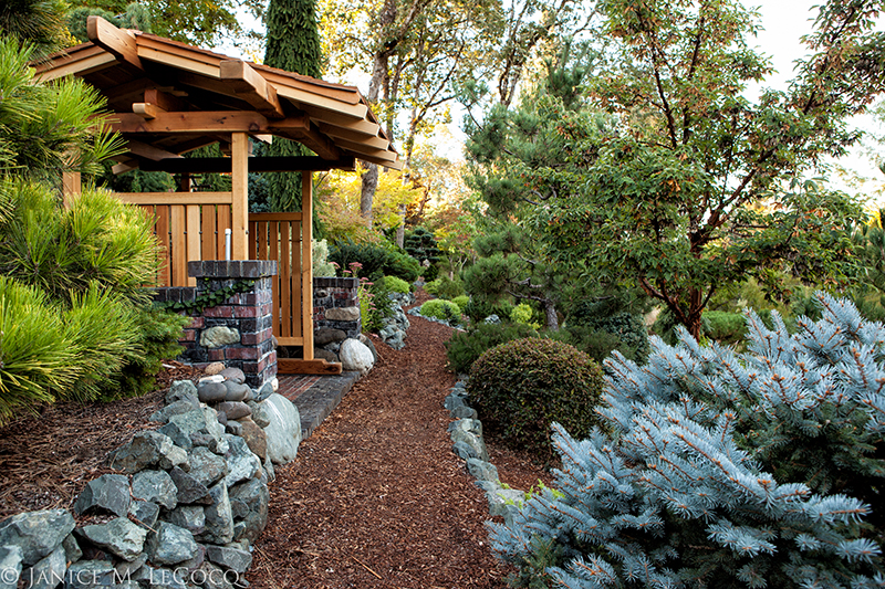 Ken designed and built this structure - the perfect place to sit and enjoy the view and the plantings.