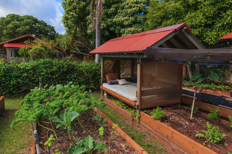 The kitchen garden at the Hui